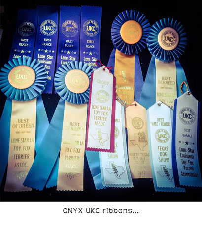 UKC Champion ribbons