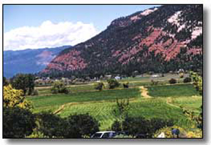 durango animas valley